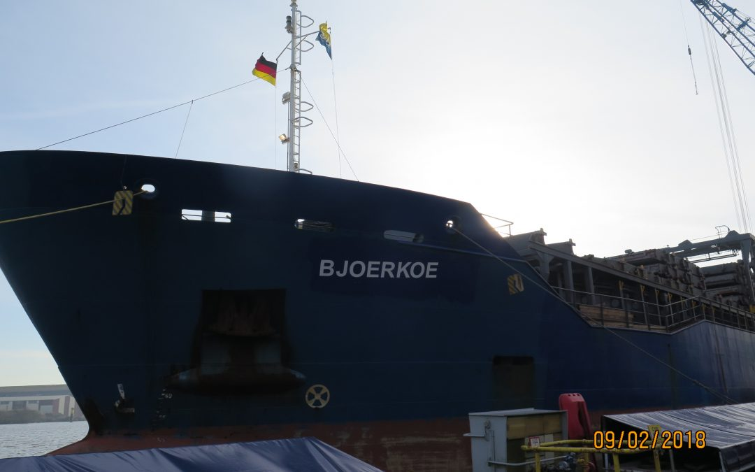 Bjoerkoe